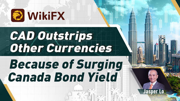 CAD Outstrips Other Currencies Because of Surging Canada Bond Yield