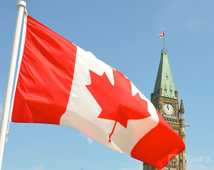Background-Screening-Compliance-in-Canada-How-SterlingBackcheck-Supports-Your-Organization.jpeg
